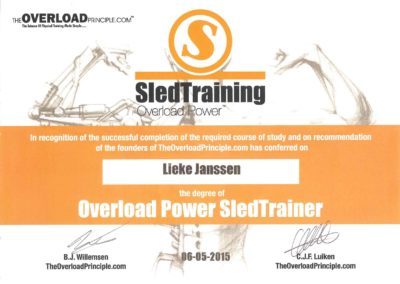 lieke janssen overload power sledtrainer